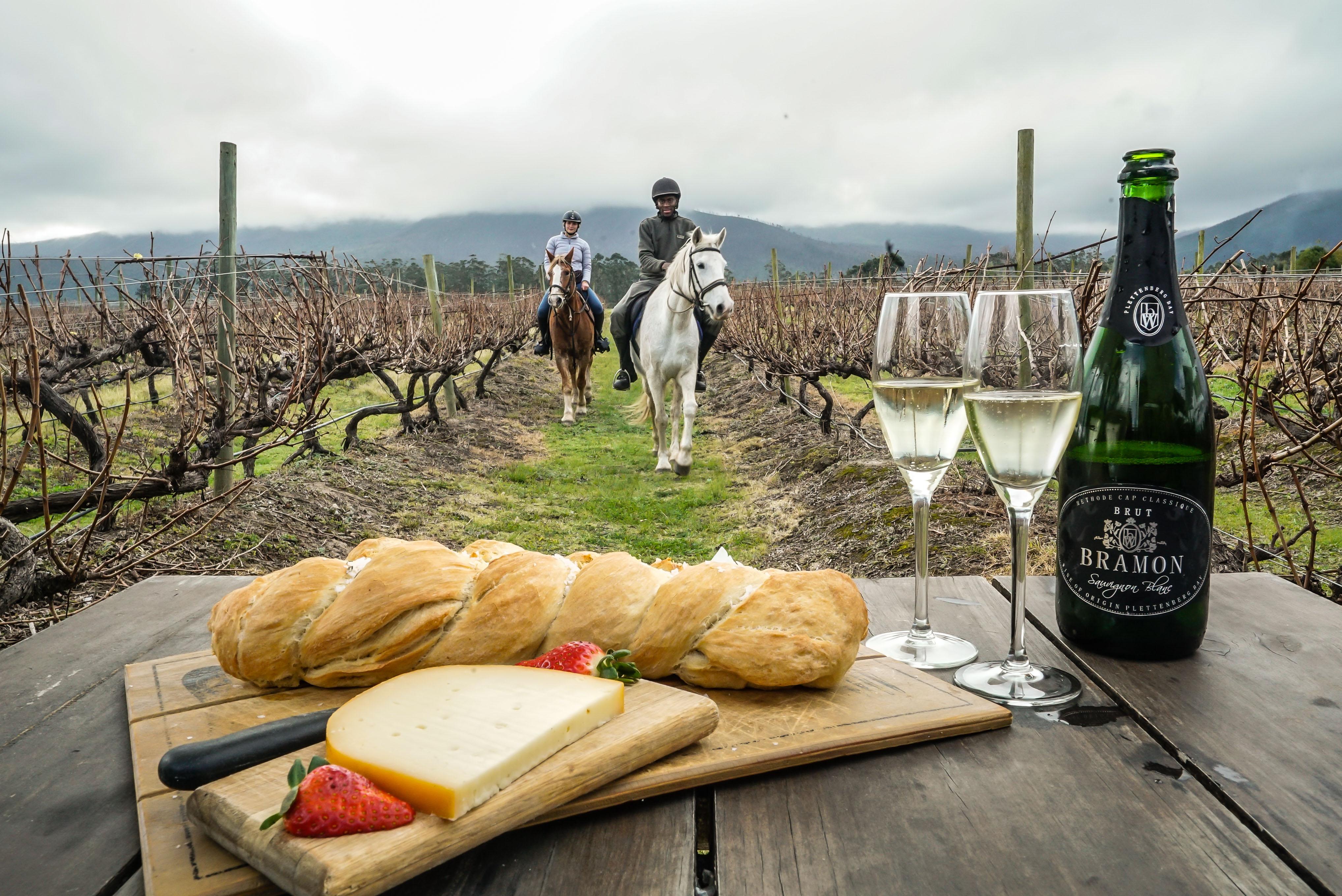 https://www.sirplett.co.za/userfiles/images/Hog-Hollow-Horse-Trails-Wine-Trail.jpg